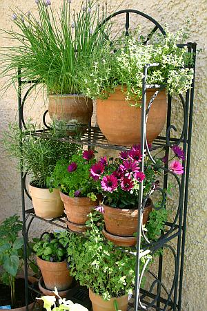 Gegen Platzmangel auf dem Balkon oder der Terrasse: ein Regal für Kräuter und Blumen