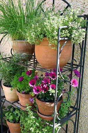 Urban Gardening Produkte Topfregal