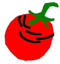 Tomatenfrucht mit Platzstellen