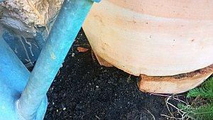 Topf aus Ton mit Frostschaden im unteren Bereich