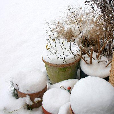 Töpfe mit Schneedecke
