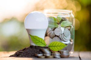 Moderne LED-Lampen zur Anzucht an lichtarmen Standorten und in der lichtarmen Jahreszeit sparen Energie und Geld (Bild Growking/Fotolia-Lizenz).