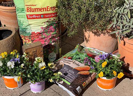 Torffreie Pflanzerden für den Anbau in Töpfen und Kübeln